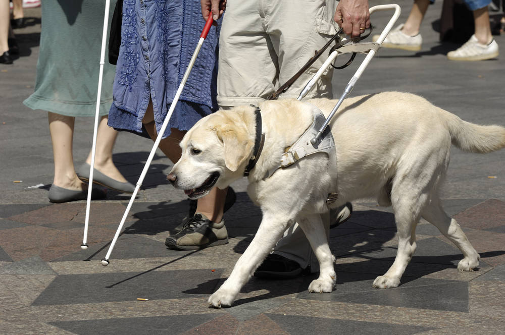 Viajar, una carrera de obstáculos para personas con discapacidad visual