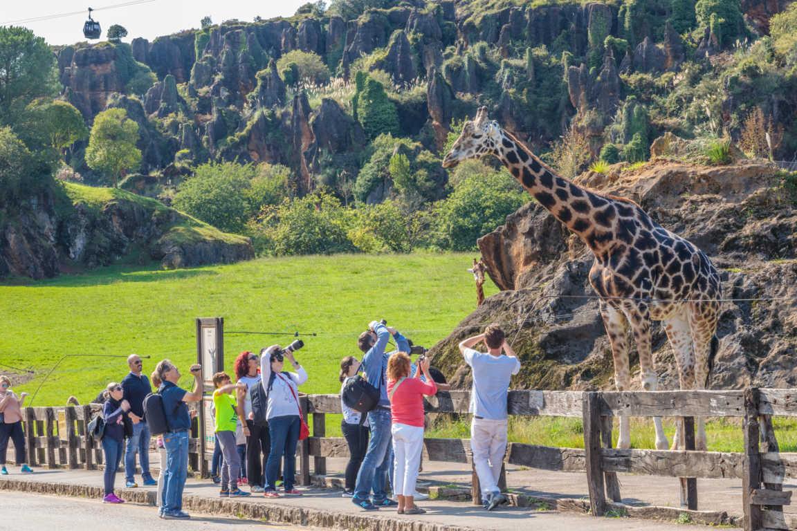 Una visita al parque de Cabárceno